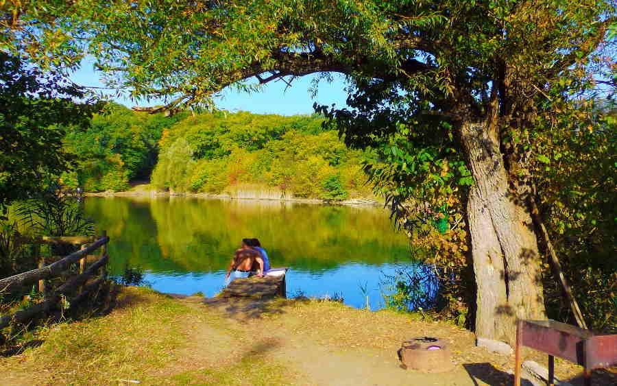 Как отлично провести отдых в лесу в Крыму? Особенности и советы