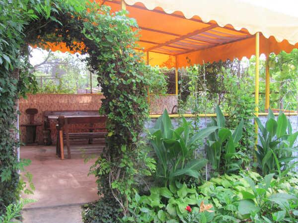 Гостевой дом «Цветочный рай» в Феодосии