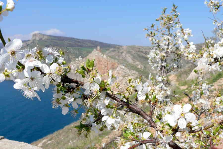 Отдых в Крыму в апреле: отправляемся на экскурсию!