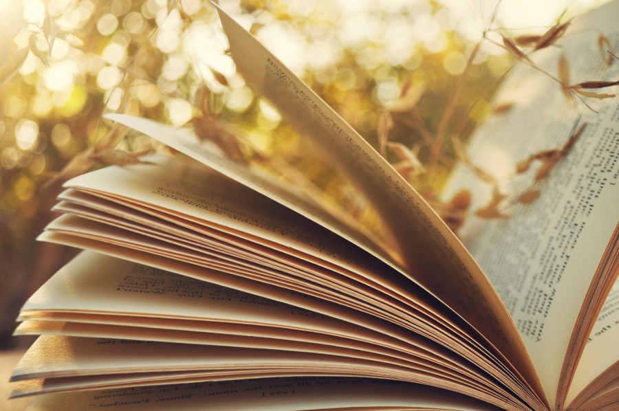 Подборка захватывающих книг для отпуска